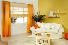 Add color to your space with Sabrina Soto