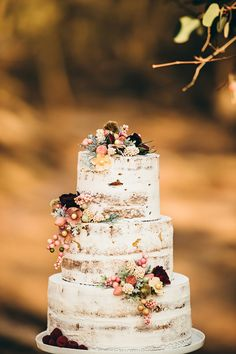 beautiful! naked cake, but I love the powdered sugar look and the berries to decorate!