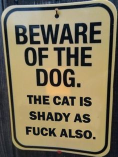 My cat growing up- was shady! Disappeared for weeks on end and would come back home- lol
