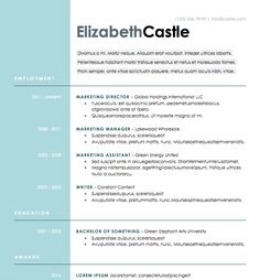 free resume download blue side microsoft word format modern resume templateresume templates - Professional Resume Samples In Word Format
