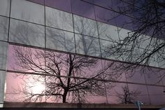 Where shadows, reflections and reality meet. Shadows, Reflection, Meet, Celestial, Sunset, Abstract, Artwork, Photography, Outdoor