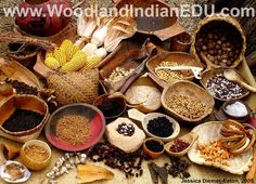 Grains, corn, fruit, and nuts were essentials of the Native American diet.  http://www.woodlandindianedu.com/storagefoods.html