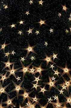 """Oh starry night...."""