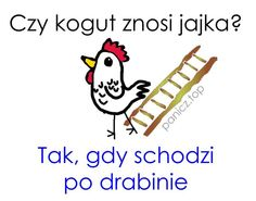 #humor #kogut #zagadki #smieszne Everything, Snoopy, Jokes, Humor, Funny, Fictional Characters, Husky Jokes, Humour, Memes