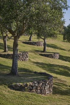 Matiatia - Suzanne Turley Landscapes #landscapes #matiatia #suzanne #turley - #Landscapes #Matiatia #Suzanne #Turley