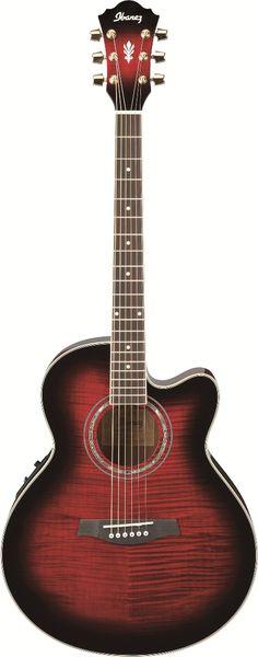 Ibanez Acoustic Guitar.