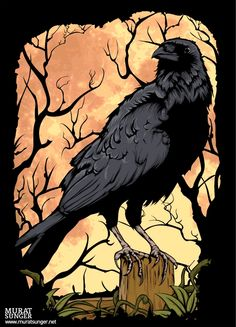 House of Fallen Leaves, The Crow Crow Art, Raven Art, Bird Art, Crow Or Raven, Quoth The Raven, Crows Ravens, Jackdaw, Caricatures, Illustration