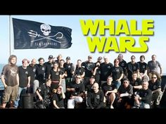 Whale Wars S04E04 The Devils Icebox - FULL EPISODE