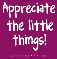 Appreciate little things quote via www.quotediary.me