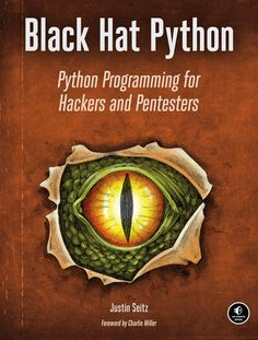 Black Hat Python - coming out soon. I snagged an early release, and it is pretty good stuff so far.