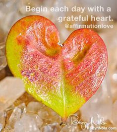 I begin each day with a grateful heart.