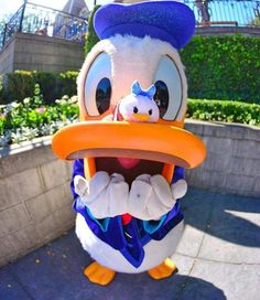 """""""All our dreams can come true if we have the courage to pursue them. Walt Disney Characters, Walt Disney World, Disney Dream, Disney Love, Disney Theme, Disneyland Photography, Donald And Daisy Duck, Disney Pins, Disney Disney"""