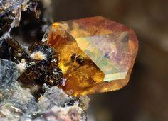 Titanite : CaTi(SiO4)O Vetralla, Vico Lake, Viterbo Province, Latium, Italy Collection & Photo: Matteo Chinellato Copyright © Chinellato Matteo - Chinellatophoto.it