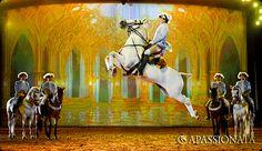"""""""Der goldene Palast"""". Die Equipe des portugiesischen Grand Maître Luis Valenca zeigt die Kapriole unter dem Reiter und Dressurlektionen in einer opulenten Ballszene."""