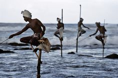 South coast, Sri Lanka, 1995, by Steve McCurry  Fishermen along the southern coast of Sri Lanka cast their lines in the traditional way atop poles so they can work in shallow water without disturbing the fish.