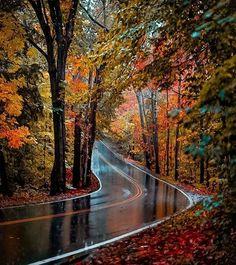 Beautiful Landscape Wallpaper, Scenery Wallpaper, Beautiful Landscapes, Fall Pictures, Nature Pictures, Autumn Photos, Landscape Photography, Nature Photography, Canon Photography