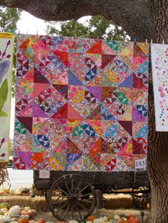 Triangle Quilt by Freddy Moran Rag Quilt, Scrappy Quilts, Baby Quilts, Quilt Blocks, Colorful Quilts, Small Quilts, Floral Quilts, Quilting Projects, Quilting Designs