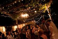 night garden party Google Search Grean Leaf Pinterest