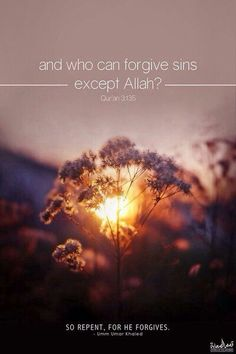 Qur'an al-i-Imran 3:135: And those who, when they commit an immorality or wrong themselves [by transgression], remember Allah and seek forgiveness for their sins - and who can forgive sins except Allah ? - and [who] do not persist in what they have done while they know.