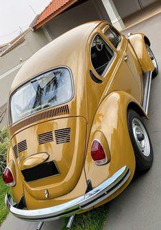 Vehicles, Sports, Classic Cars, Autos, Hs Sports, Vintage Classic Cars, Car, Sport, Classic Trucks