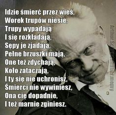 Prawda o życiu Funny As Hell, Wtf Funny, Cool Lyrics, Science Humor, Good Mood, Really Funny, True Stories, Sarcasm, Best Quotes