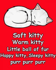 Soft Kitty: Sheldon's Song For When You're Sick, From Big Bang Theory T Shirt…
