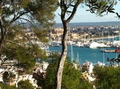 Living in Palma is lovely! Today we have blue skies and 18 °C.