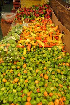 Chiles, Mercado Oaxaca.