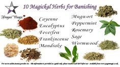 "the-pandemonium-pagan: ""Herbal correspondences for blessing, banishing personal power and love. Note: Always be cautious, and know your stuff when using herbs, as some will be poisonous!"