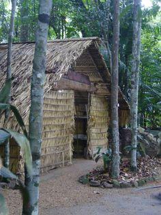 Amazonian vernacular - Manaus, Brazil Photo: Sean Watson