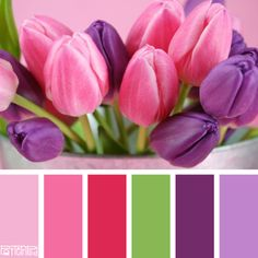 Tantalizing Tulip #patternpod #patternpodcolor #color #colorpalettes #weddings