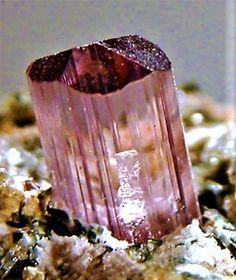 Minerals And Gemstones, Rocks And Minerals, Natural Crystals, Stones And Crystals, Opal Mineral, October Birth Stone, Rocks And Gems, Pink Tourmaline, Powder