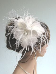Feather Wedding Headpiece with Bridal Birdcage Veil