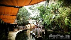 Live from the Jungle Cruise #Disneyland