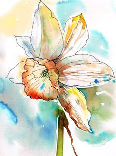 watercolour and ink daffodils - Google Search