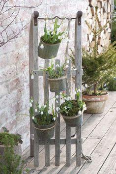 Decoration ideas with snowdrops- Deko-Ideen mit Schneeglöckchen Snowdrops in tin pots on a sled - Gazebos, Little Gardens, Ideias Diy, Pallets Garden, Diy Garden Projects, Garden Ideas, Cool Ideas, Winter Garden, Amazing Gardens