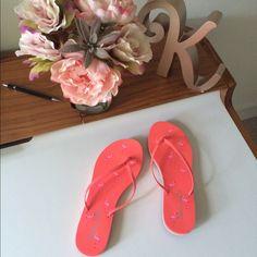 Nwot Splendid Hot Coral Flamingo Flip Flops - 7