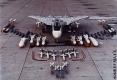 What a payload. The only aircraft to ever have the AIM-54 Phoenix missile. Effective range of 100 nautical miles!