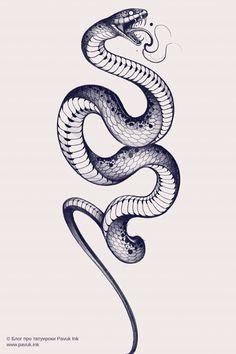 Snake Sketch, Snake Drawing, Snake Art, Tattoo Design Drawings, Tattoo Sketches, Tattoo Designs, Stencils Tatuagem, Tattoo Stencils, Mini Tattoos