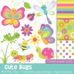 Cute bugs - Clipart and Digital Paper Set