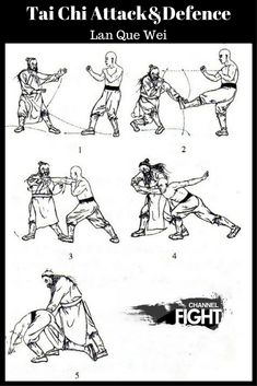 Tai Chi attack and defence-Lan Que Wei Martial Arts Techniques, Self Defense Techniques, Tai Chi Exercise, Martial Arts Workout, Boxing Workout, Tai Chi For Beginners, Marshal Arts, Tai Chi Qigong, Ju Jitsu