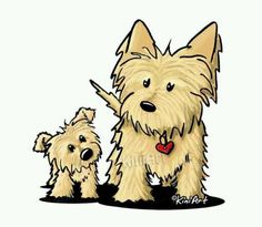 Cairn Mom and Puppy : KiniArt Yorkies, Yorkie Puppies, Westies, Animals And Pets, Cute Animals, Yorkshire Terrier Puppies, Dog Art, Animal Drawings, Pet Birds