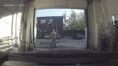 LMAO # 85 - Today Top Reddit funny - 18 gifs