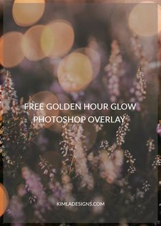 Free Golden Hour Glow Photo Overlay