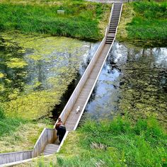 Moses Bridge - I want to see this!