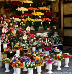 Flower Stands on Viru Street