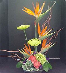 1800flowers tucson