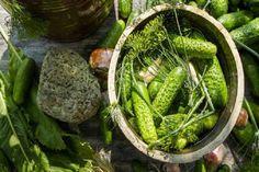 Hogy rakj el uborkát télire? Íme 3 jól bevált recept még nagyanyáink korából! Herbal Remedies, Home Remedies, Polish Recipes, Slow Food, Pickles, Asparagus, Green Beans, Cucumber, Herbalism
