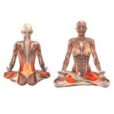 half-lotus-pose-left-leg-up