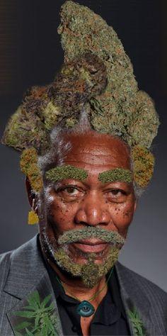 May Roundup: 21 Hilarious Weed Memes